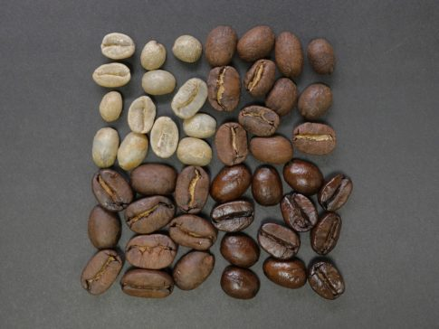 Oily coffee beans, different roasted coffee beans