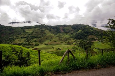 Where do coffee beans grow, Colombia
