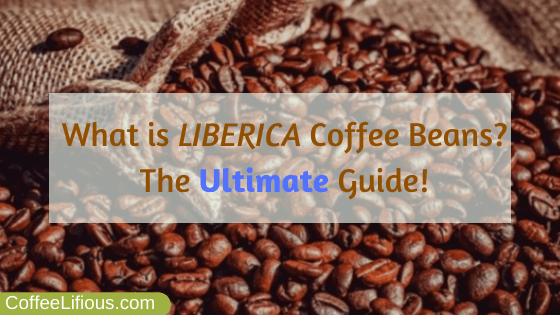 What is Liberica coffee beans