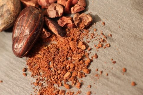 What is the difference between cocoa beans and coffee beans, cocoa powder